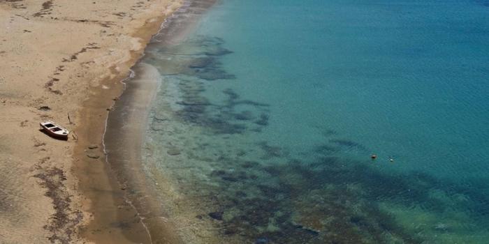 Cyclades - Άνδρος