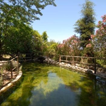 Rhodes - Σάλακος
