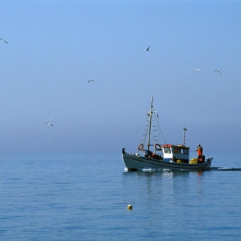 Fishing Boat, Chora Anafi, Cyclades, Greece, Europe ©Clairy Moustafellou /IML